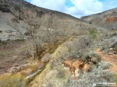 Cañón Caracena; Encina  Valderromán; la alberca salamanca llanos del hospital liencres cabrilla